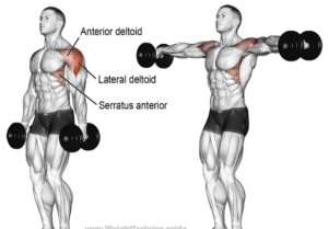 Lateral Raises for shoulder workouts