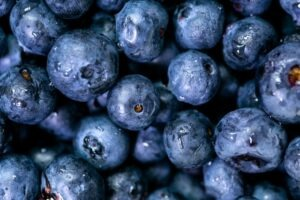 Blueberries can boost your immune systemBlueberries can boost your immune system