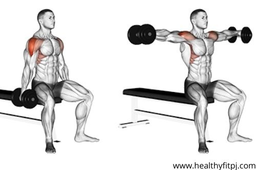 Seating Lateral Raise with Dumbbells