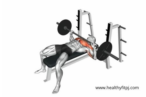 The Barbell Bench Press